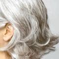 29 Probado Remedios caseros para el pelo gris