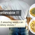 No vas a creer cómo estos 2 semillas increíbles pueden eliminar los cálculos renales sin esfuerzo!