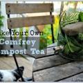 Una receta de té de compost hecho con hierbas consuelda silvestre