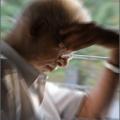 Contrarrestar los trastornos cerebrales por el poder del cerebro?
