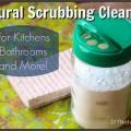 Naturales Bricolaje limpiador de lavado en polvo