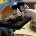 Nueva prueba detecta más virus que las pruebas estándar