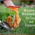Remedios caseros para la tos y la congestión de la primavera