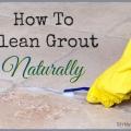 Cómo limpiar la lechada de forma natural, sin fatiga absoluta