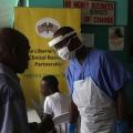 Brote de Ébola 2015: virus muta, no pueden ser asesinados por las drogas, dice informe