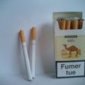 Hacedor de cigarrillos Camel prohíbe fumar lugar de trabajo