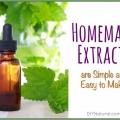 Hacer extractos de sabores en casa es simple y fácil
