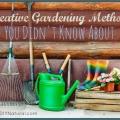 Hügelkultur Permacultura y métodos más jardinería creativa