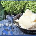 Shea beneficios de mantequilla y formas favoritas para utilizarlo
