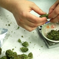 El potencial de la marihuana para el tratamiento de alzheimer