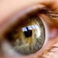 La restauración de la visión con células madre embrionarias con éxito durante la prueba preliminar