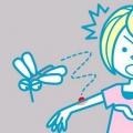 9 eficaz Remedios caseros para las mordeduras de araña