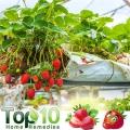 Top 10 de las frutas para diabéticos