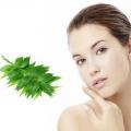 Top beneficios del neem para el cuidado de la piel