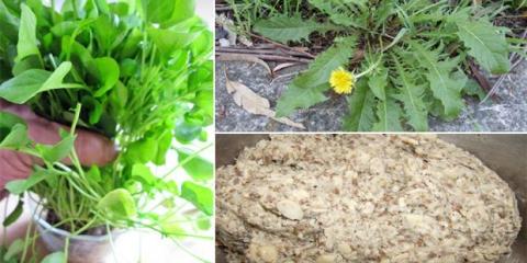15 remedios caseros a base de plantas para el bocio