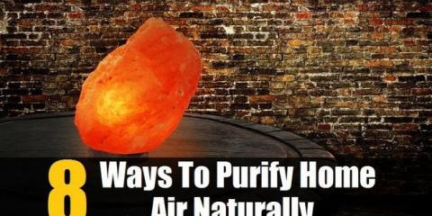 8 maneras de purificar el aire en casa de forma natural para que su familia puede respirar el más sano, más limpio posible de aire