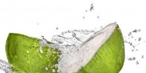 Los 10 mejores usos y beneficios del agua de coco